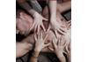 Magic Fingers Massage