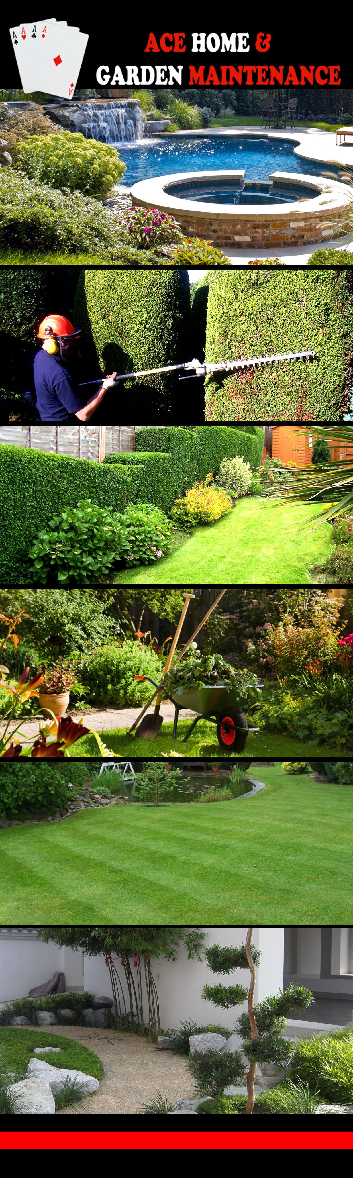 Ace Home Garden Maintenance
