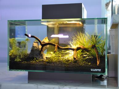 Aquariums Eastern Sydney