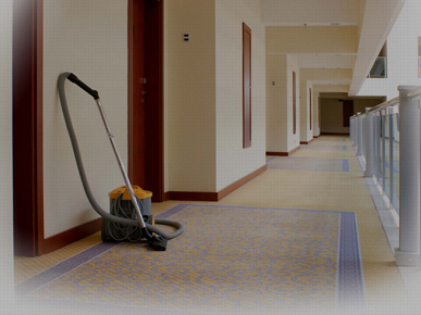 Pristine Dry - Carpet, Upholstery/Leather, Tile & Grout Cleaning