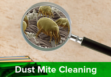 BriTec Carpet Cleaning Solutions
