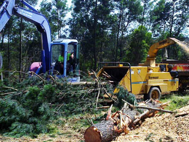 JLR Excavation and Tree Services
