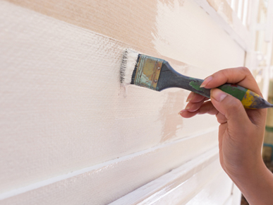 Camden Painting and Decorating Services