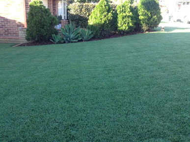Lawn Mowing Campbelltown