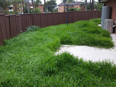 Emir's Mowing and Gardening Services