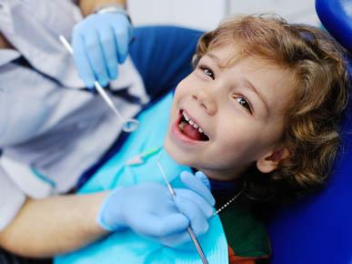 Seb Northern Beaches Dental