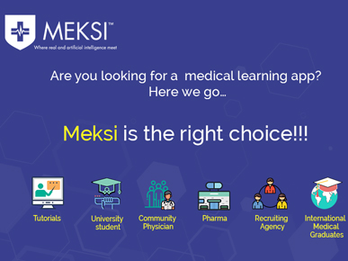 MEKSI - (Medical Knowledge System)