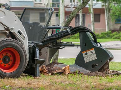 Cut Price Tree Service