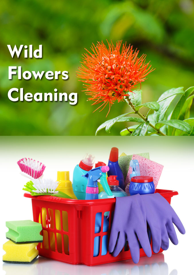 WILD FLOWERS CLEANING