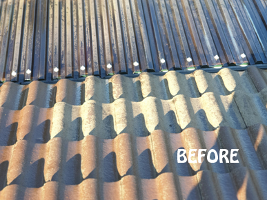Rad Roof Restoration & Roof Painting