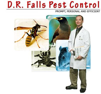 D R FALLS PEST CONTROL