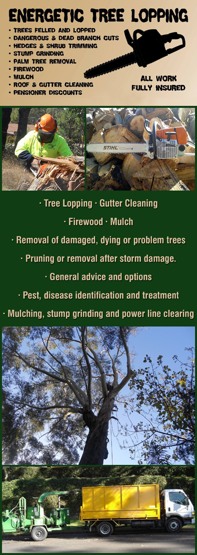 Tree Lopping Blacktown