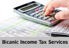 BICANIC INCOME TAX SERVICES