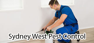 Sydney West Pest Control Solutions